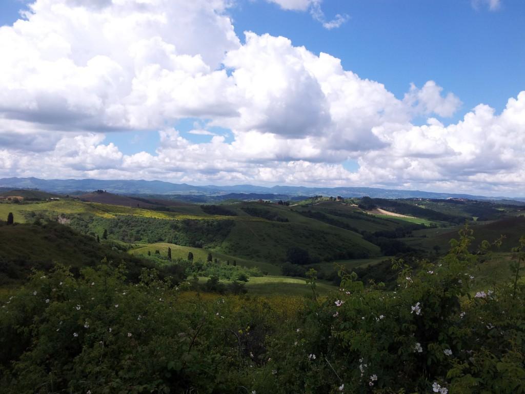 Castelfalfi colline