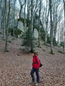 Sara Paolucci - Foresta de La Verna