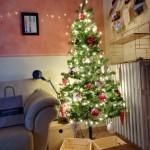 Sara Paolucci - albero di Natale